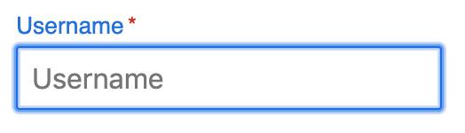 Default outline on Chrome