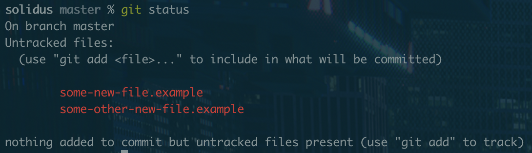 A screenshot with examples of untracked files