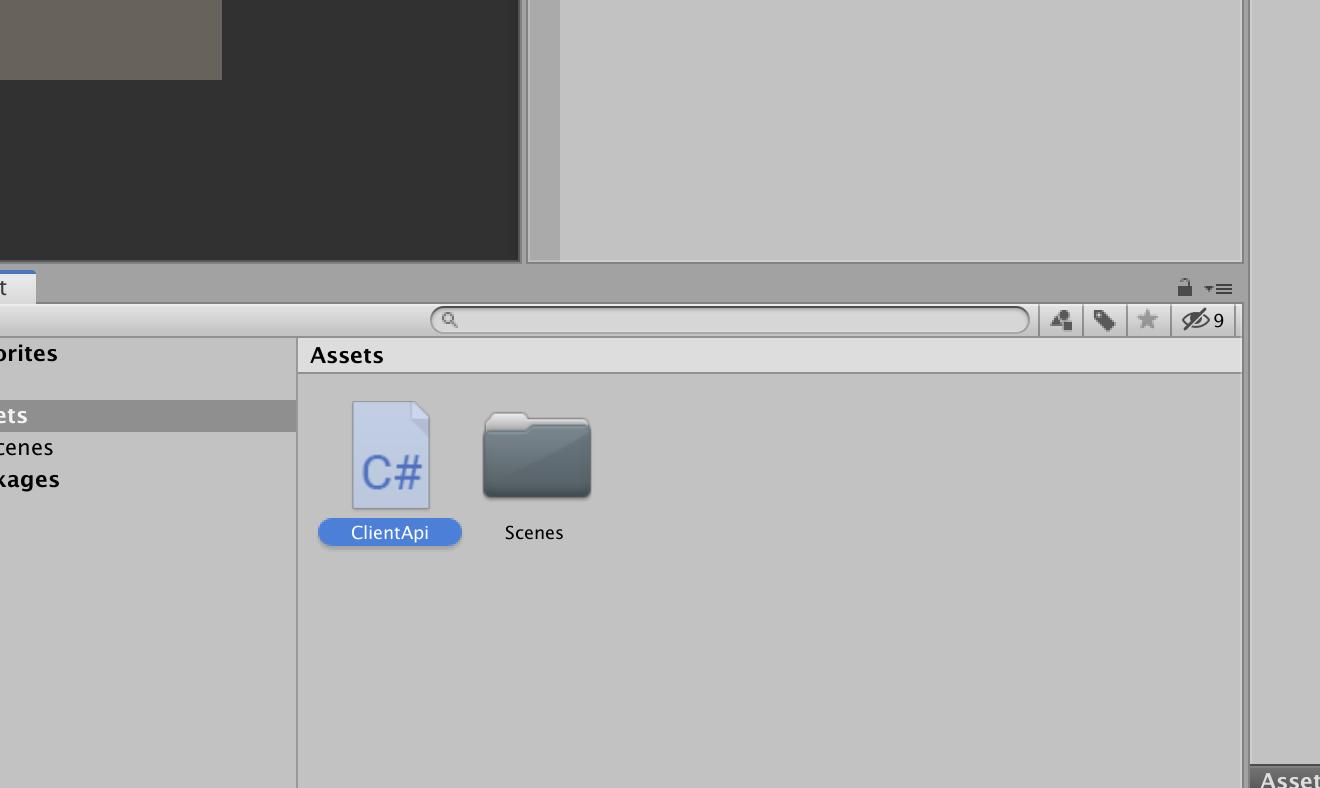 ClientApi Script