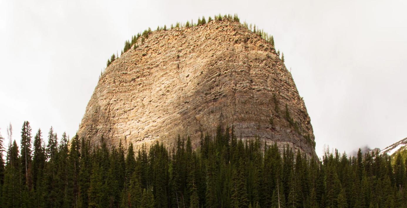 Monolith: big, rigid codebase